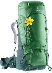 Рюкзак Deuter 2020 Aircontact 60+10 SL leaf-forest